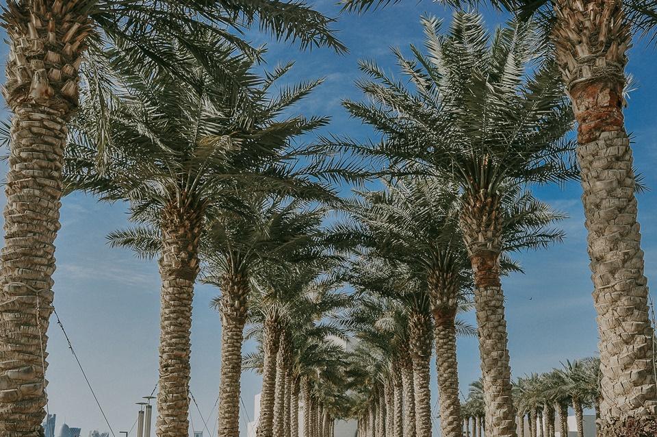 Doha_Qatar_Travel_Destination_Photographer